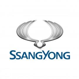 Ремонт турбин Ssang Yong